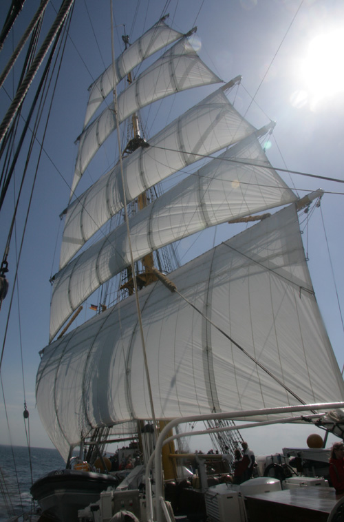 Segel der Gorch Fock im Wind