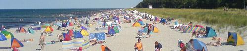 Bunte Strandmuscheln als Sonnenschutz dicht an dicht am Strand
