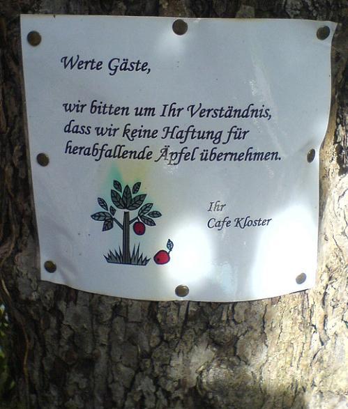 """Warnschild an einem Baum vor herabfallenden Äpfeln: """"Wir bitten um ihr Verständnis, dass wir keine Haftung für herabfallende Äpfel übernehmen."""""""