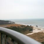 Strand mit Windflüchtern