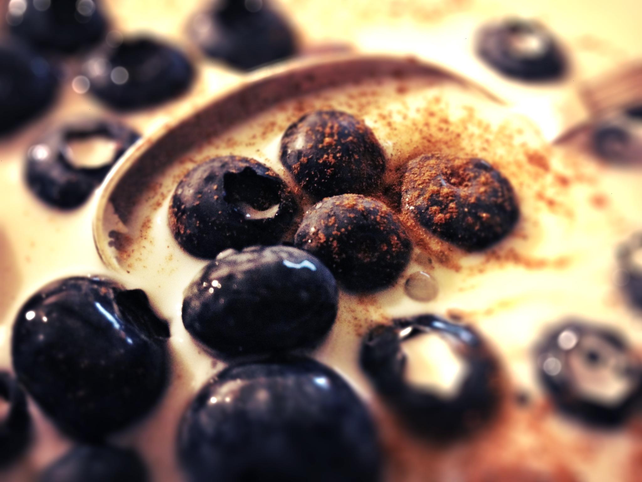 Blaubeeren mit Zimtpulver in Milch
