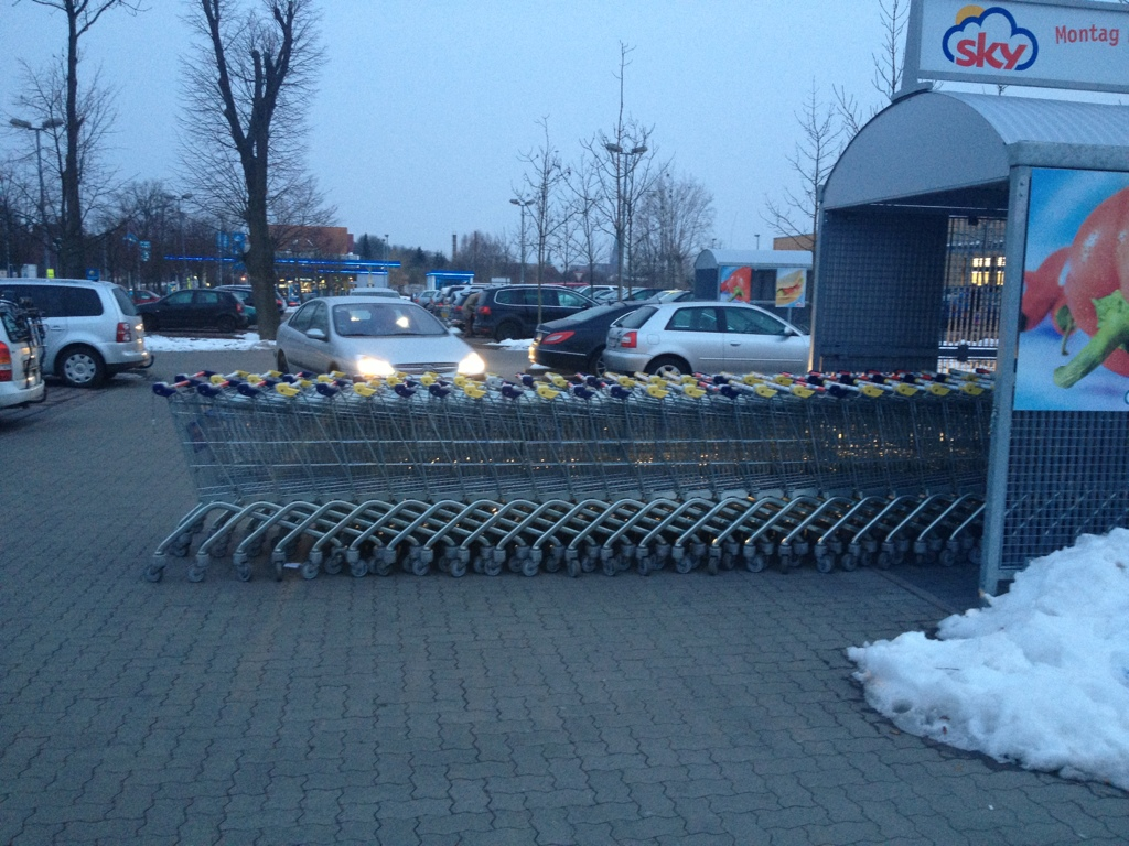 Einkaufswagen in zu langer Schlange