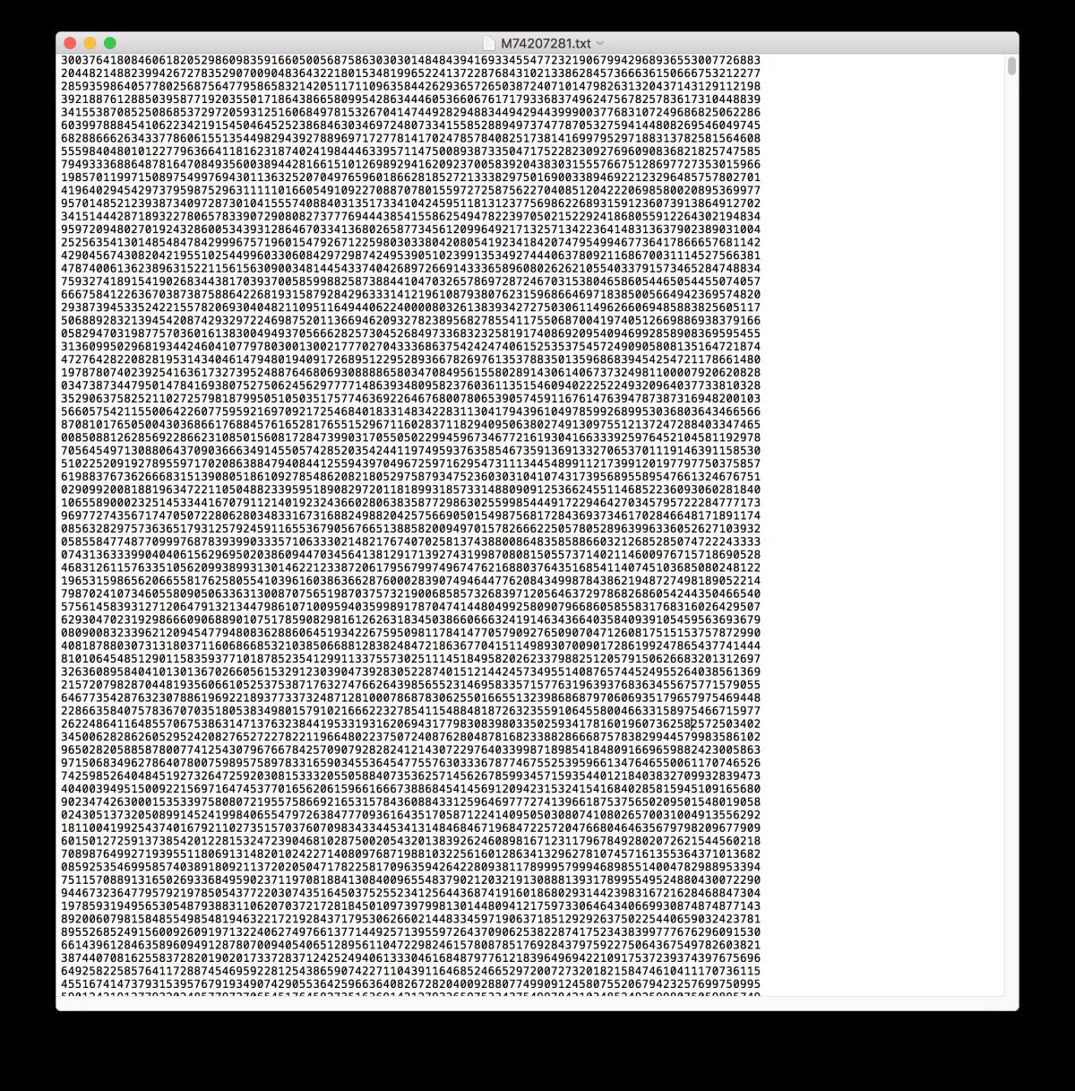 Screenshot einer Textdatei mit sehr vielen Ziffern.