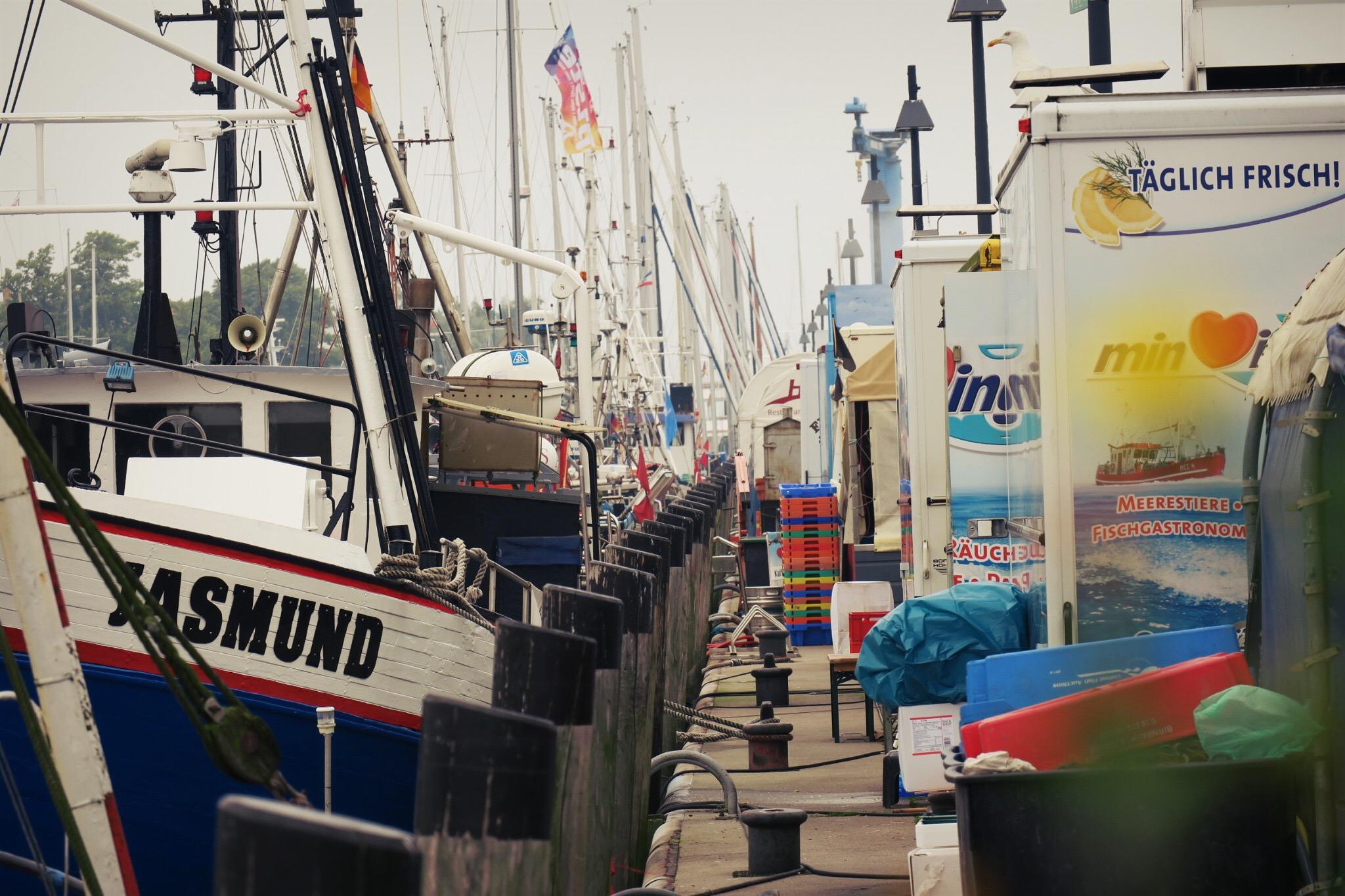 Kutter, Dalben und bunte Fischkisten in langer Reihe