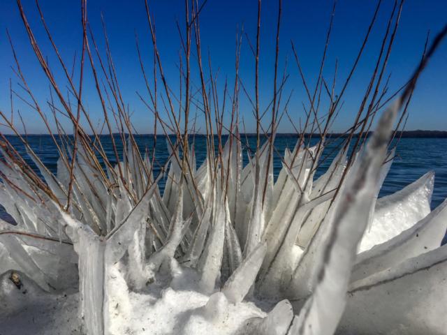 Weiße Eisformen spannen zwischen Zweigen.