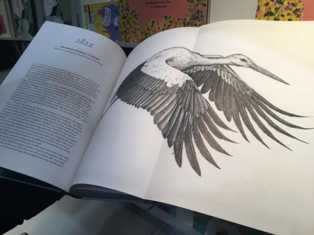 Ausklappbare Buchseite mit gezeichnetem Storch.