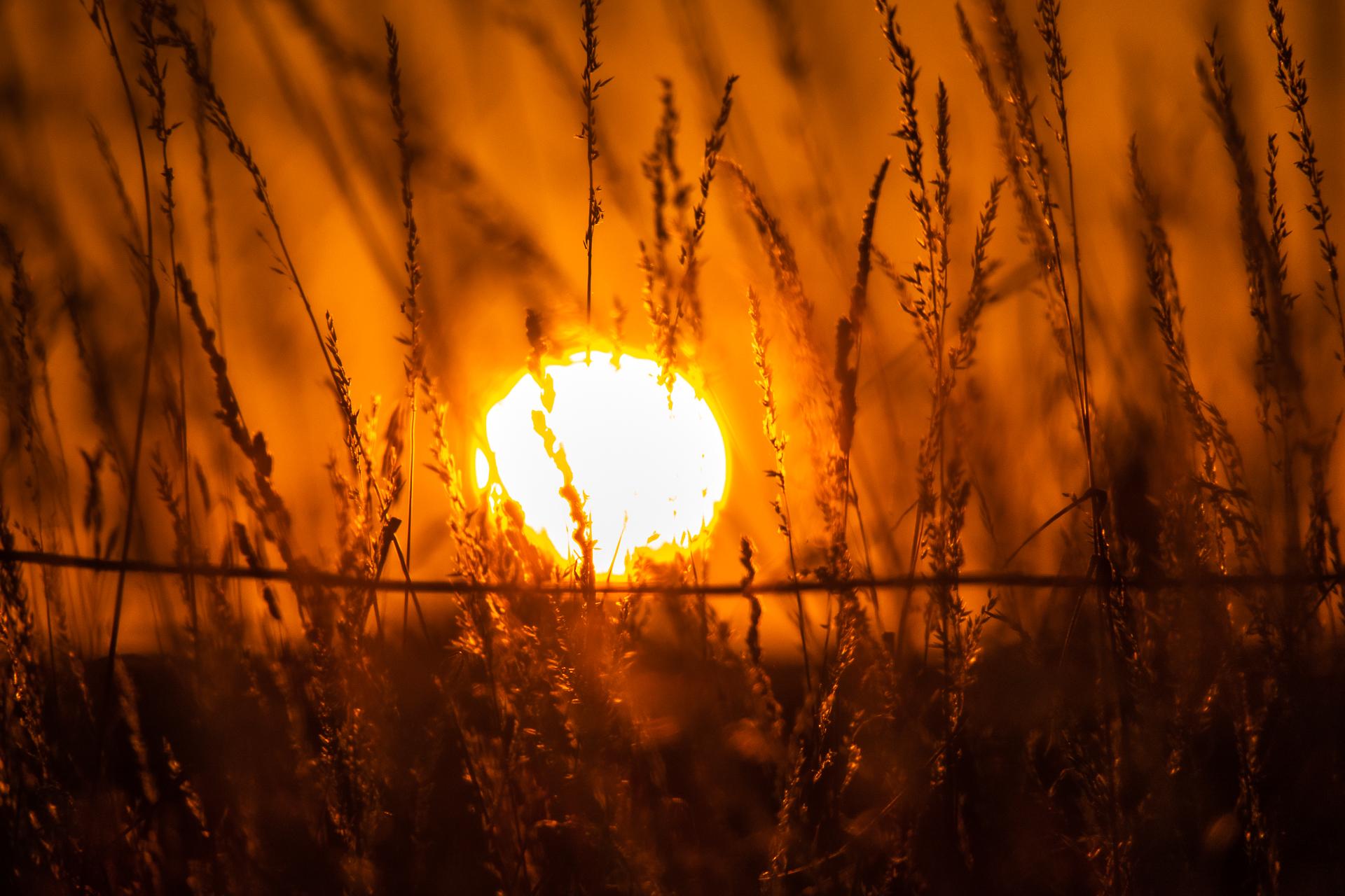 gleißender Sonnenball, optische Illusion, scheint auf einem Draht, der qquer im Vordergrund gespannt ist, zu balancieren.